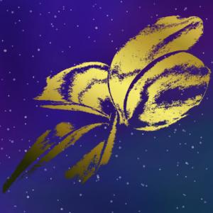 Space Plumeria Logo