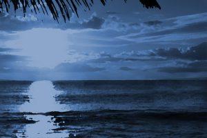 Blue Tint Sunset